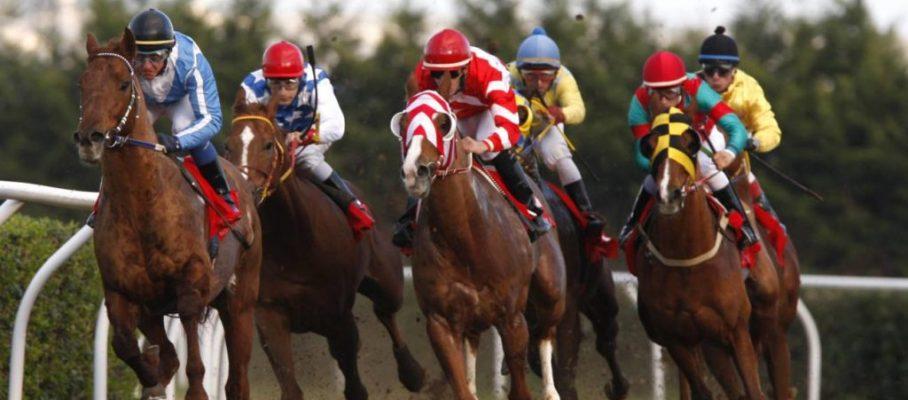 racing at Mediterraneo racecourseSiracusa, 12th jan. 2008ph. Stefano Grasso